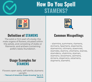 Correct spelling for Stamens