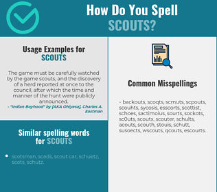 Correct spelling for scouts