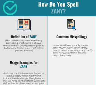 Correct spelling for zany