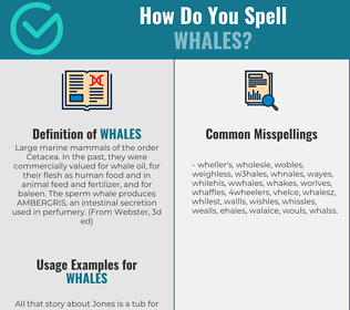 Correct spelling for Whales