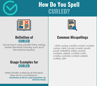 Correct spelling for curled