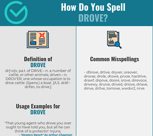 Correct spelling for drove