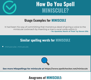 Correct spelling for miniscule