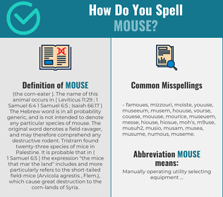 Correct spelling for mouse