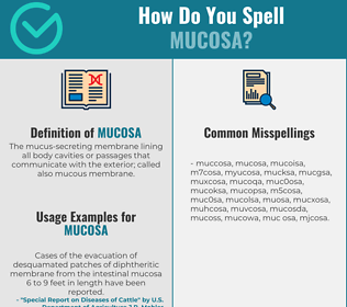 Correct spelling for mucosa