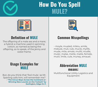 Correct spelling for mule