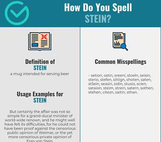 Correct spelling for stein
