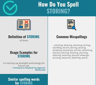 Correct spelling for Storing