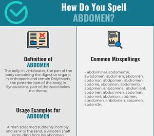 Correct spelling for abdomen