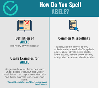 Correct spelling for abele