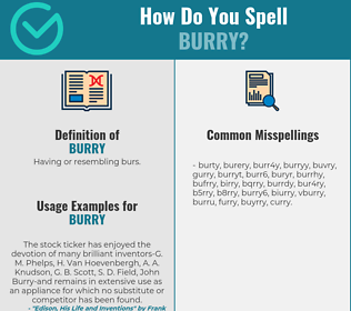 Correct spelling for burry
