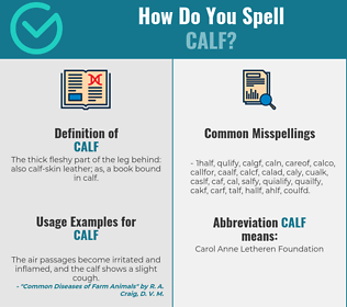 Correct spelling for calf
