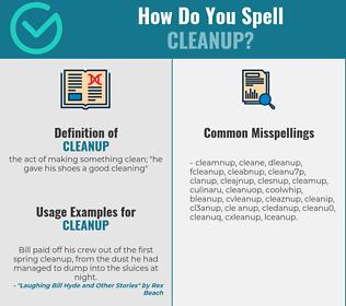 Correct spelling for cleanup