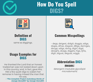 Correct spelling for digs