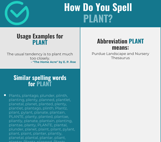 Correct spelling for plant