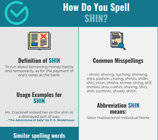 Correct spelling for shin