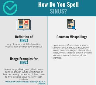 Correct spelling for sinus