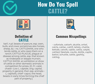Correct spelling for cattle