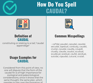 Correct spelling for caudal