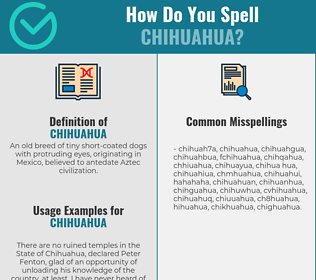 Correct spelling for chihuahua
