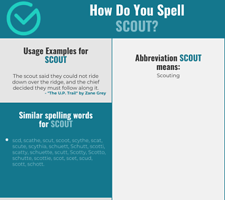 Correct spelling for scout