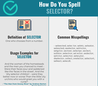 Correct spelling for selector