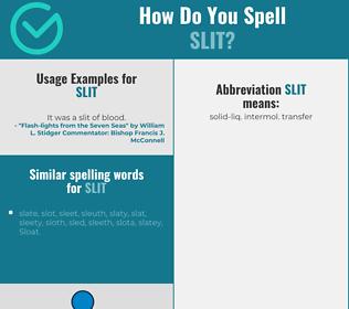 Correct spelling for slit