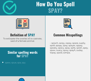 Correct spelling for spay