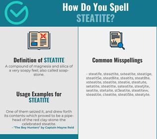 Correct spelling for steatite