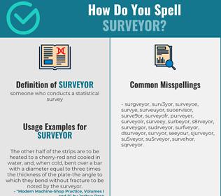 Correct spelling for surveyor