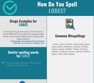 Correct spelling for lobes