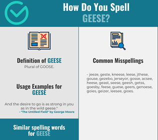 Correct spelling for Geese