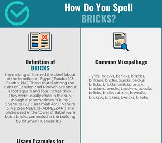 Correct spelling for BRICKS