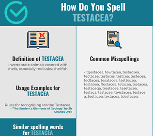 Correct spelling for testacea