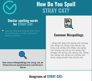 Correct spelling for stray cat