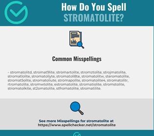 Correct spelling for stromatolite