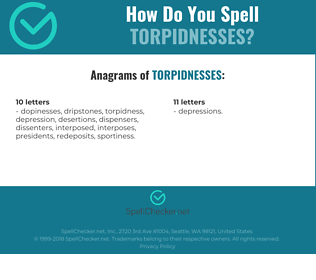 Correct spelling for torpidnesses
