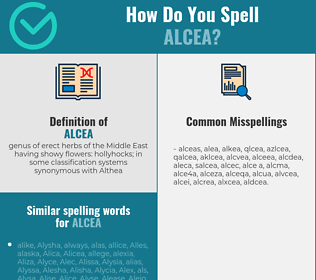 Correct spelling for alcea