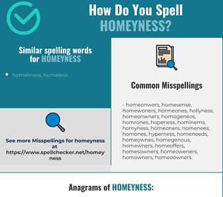 Correct spelling for homeyness