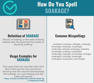 Correct spelling for soakage