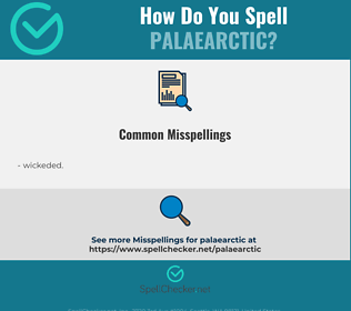 Correct spelling for palaearctic