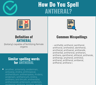Correct spelling for antheral