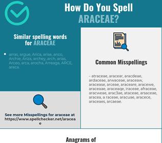 Correct spelling for araceae