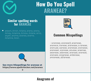 Correct spelling for araneae