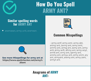 Correct spelling for army ant