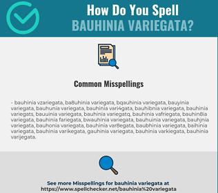 Correct spelling for Bauhinia Variegata