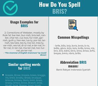 Correct spelling for bris