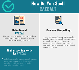 Correct spelling for caecal