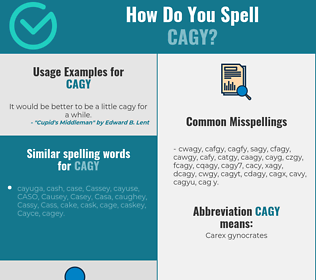 Correct spelling for cagy