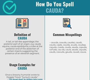 Correct spelling for cauda